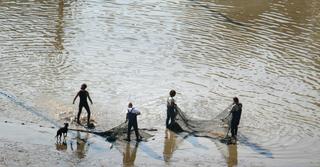 ומה נשאר למגדלים? בריכות דגים, צילום: אסף סולומון
