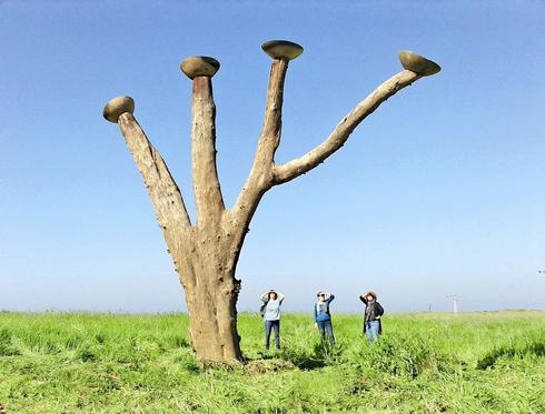 גן הפסלים. צילום: בני קימרון