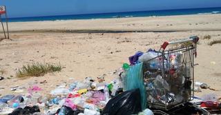 צילום: המשרד לאיכות הסביבה