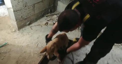 צילום מתוך הסרטון: כבאות והצלה תחנת השרון